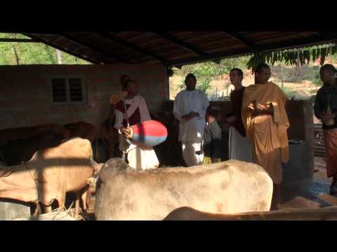 Goshala Opening at SSKBK Hebri Near Udupi