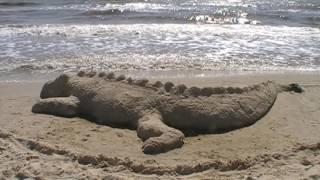 Крокодил на берегу - у моря. Большевик. Приморское.