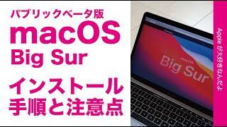 昨日出た!新 MacOS 11 Big Sur パブリックベータ版・インストール方法と注意点にCatalinaへの戻し方(iOS同様にベータは誰にでもオススメするものではないです)