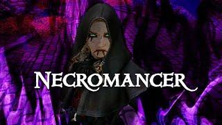 Necromancer lv83 vs Ebony Warrior - SKYRIM SE BUILD MODS