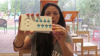 Non Toxic Toys - Learning Math Concepts With Plan Toys