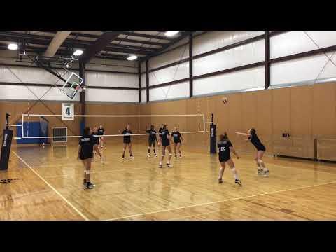 mizuno volleyball new york juniors