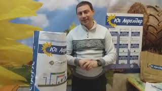 Семена под Евролайтнинг ИМИСАН НС, Высокоурожайный гибрид 42 ц/га, Устойчив к заразихе А-Е и засухе. Стандарт от компании ТД «АВС СТАНДАРТ УКРАЇНА» - видео