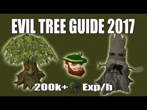Runescape 3] Crystallize Acadia Trees Guide | Menaphos