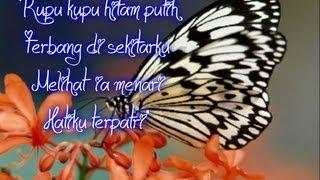 Kupu-kupu Hitam Putih ~ Iwan Fals With Lyrics