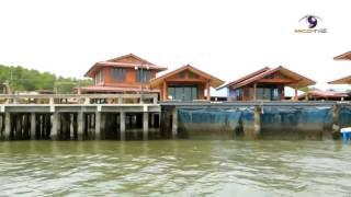 บ้านทะเลดาว โฮมสเตย์ คู่เลิฟตะลอนทัวร์หมู่บ้านไร้พื้นดิน จ จันทบุรี