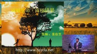 2016/03/06 張伯笠牧師:兩種生命