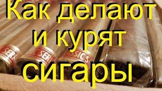 🚬Как делают и курят СИГАРЫ, ликбез для начинающих. От канала Самогонщиков.