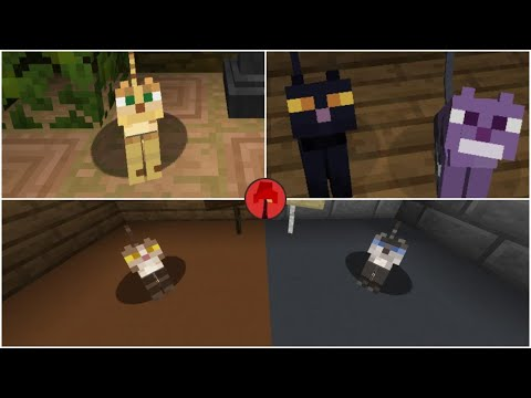 Mo Cats Resource Pack Minecraft Texture Pack