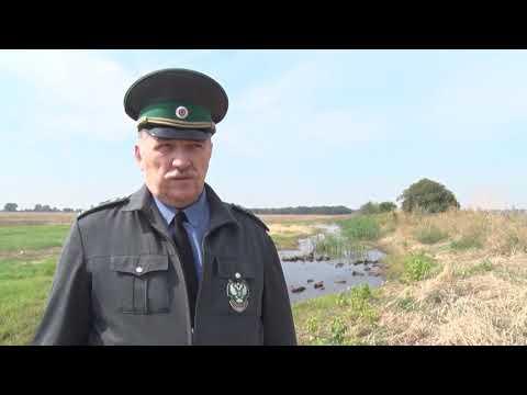 В Ростовской области Управлением Россельхознадзора выявлено повреждения мелиоративного сооружения на земельном участке сельхозназначения