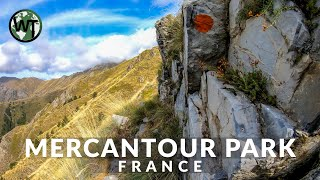 French Alps, Parc National Du Mercatour - 🇫🇷 France - 4K Virtual Tour