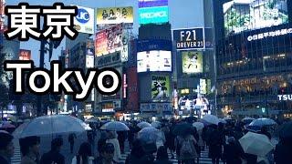 ド定番の東京観光コース!名古屋人が東京を真面目に観光してみた。 動画キャプチャー