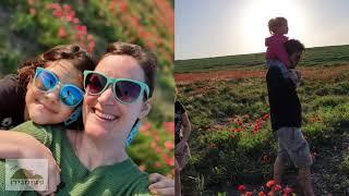 שדה הפרגים ליד הקיבוץ אפריל 2020(1 סרטונים)