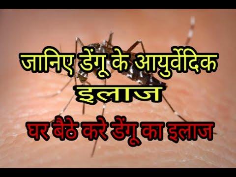 जानिए डेंगू से बचने के आयुर्वेदिक उपचार !