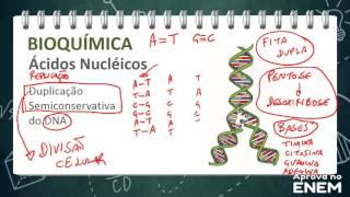 Bioquímica Celular II