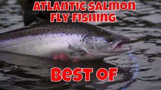 Atlantic Salmon Fly Fishing - Best Of