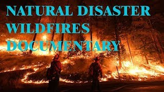 Forest fires documentary | Deadliest Wildfires