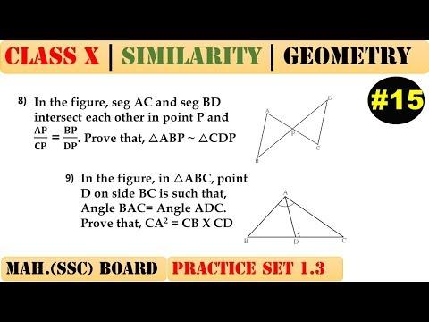 Similarity [Part 15] | Class 10 | Practice set 1.3 (MATHS 2) | Mah. (SSC) Board | Q8 and Q9