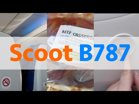 787-9 DREAMLINER! | Scoot | Singapore – Perth | Flight Review
