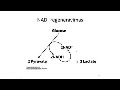 Nauji vaistai nuo hipertenzijos sergant cukriniu diabetu