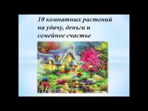 Иегова секрет семейного счастья