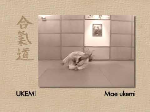 Kyu Prüfungsprogram - Ukemi