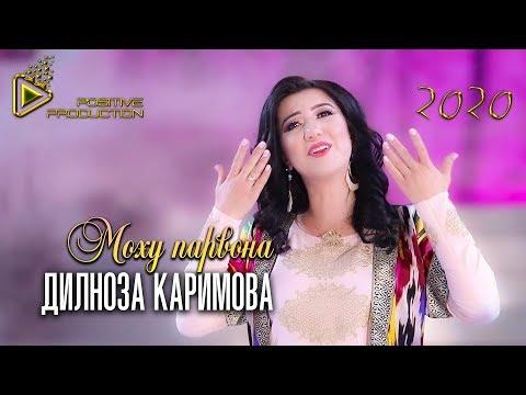 Дилноза Каримова - Моху парвона (Клипхои Точики 2019)
