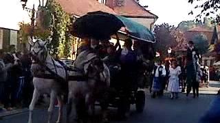 preview picture of video 'Tokaj hegyaljai Szüreti Napok felvonulása 2013.10.05'