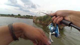 Рыбалка в кировоградской области красный кут