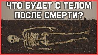 Edu: Что произойдет с телом после смерти?