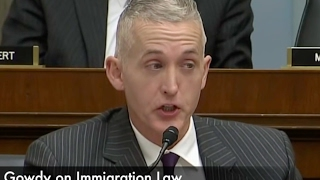 Trey Gowdy Explains Immigration Law Like a Boss!