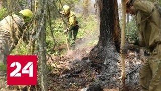 Борьба с пожарами: как направленными взрывами тушат огонь - Россия 24