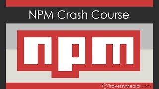 Where to run npm commands