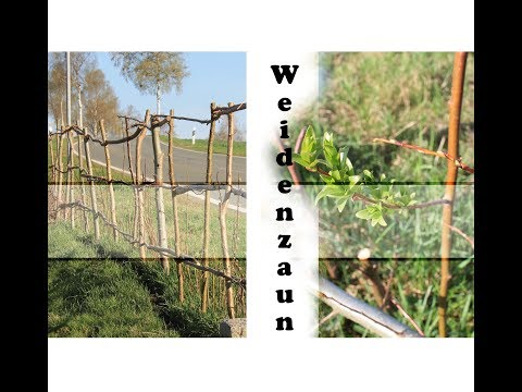 Zaun aus Naturmaterialien bauen | kostenlos | Permakultur