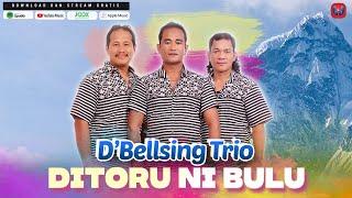 Gambar cover D'BELLSING - DITORU NI BULU - LAGU BATAK TERBARU