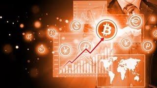 Что будет с курсом Bitcoin?   BitNovosti.com