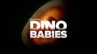 SUPER-CUTE VIDEO OF DINOSAUR BABIES!!!