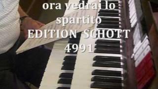 Hieronimo da Urbino, Organista  Santa Barbara Mantova, Italia, Studio dell'Inno AVE MARIS STELLA, Giovanni Vianini, Milano, Italia