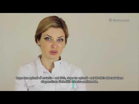 Torna trattamento in Almaty