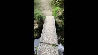 2017年6月24日土FC2ライブ観光スポット富山県高岡市高岡城