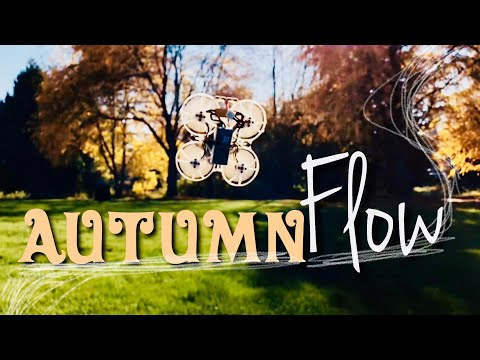 the-leaves-are-falling--2s-whoop-freestyle--micro-fpv