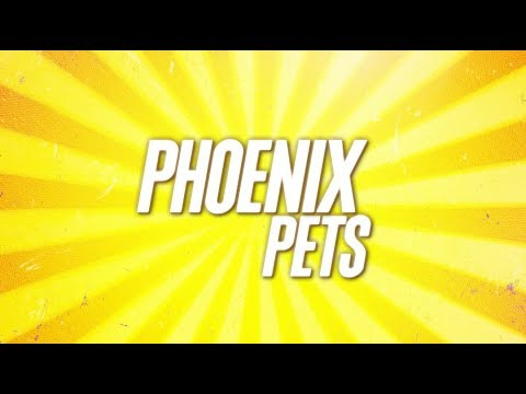 Pet Businesses and their Economic Impact | Phoenix Pets