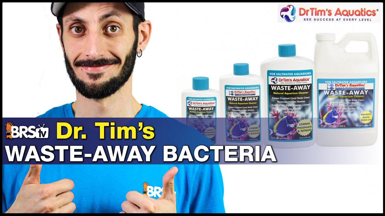 Dr. Tim's Waste-Away Bacteria: Clean sludge from your reef tank without lifting a finger!