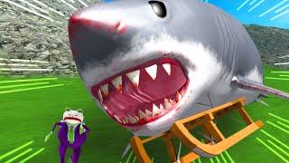 GIANT SHARK ON A GIANT SLED vs JOKE FROG - Amazing Frog Part 181 | Pungence