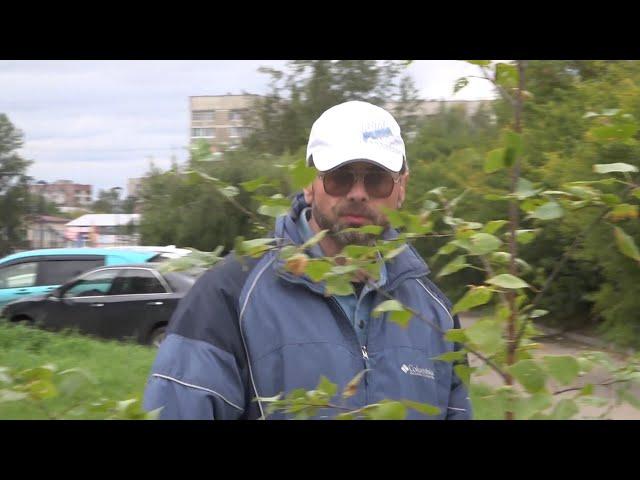 Зелёный город в руках ангарчан