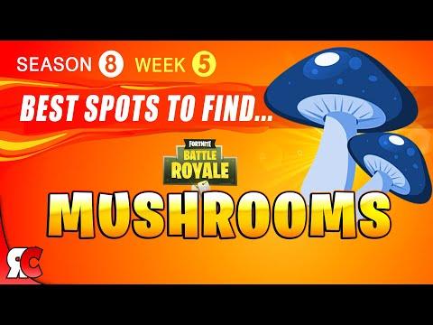 fortnite week 5 best mushroom locations season 8 gain shield from mushrooms best mushroom spots - all mushrooms fortnite