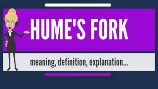 What is HUME'S FORK? What does HUME'S FORK mean? HUME'S FORK meaning, definition & explanation