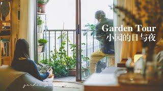 Edible Balcony Garden Tour 2020 / Grow Vegetable & Herbs In Containers / Summer Routine