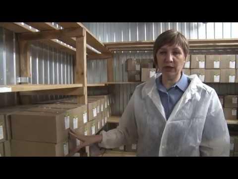 В Ростовской области Управлением Россельхознадзора выявлено более 12 тонн небезопасной молочной продукции