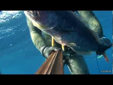 Ucraina tutti su pesca su una filatura